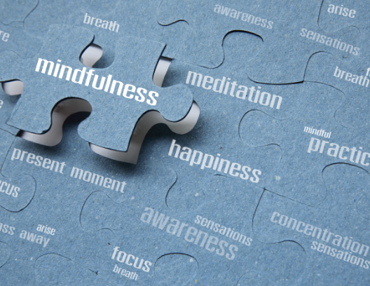Mindfulness-ElementsofMindfulness (2)